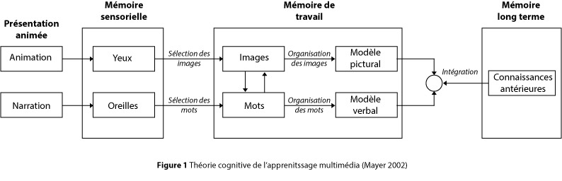 Mayer schema theorie multimedia.jpg